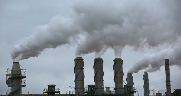 التلوث البيئي سبب رئيس في ارتفاع الوفيات