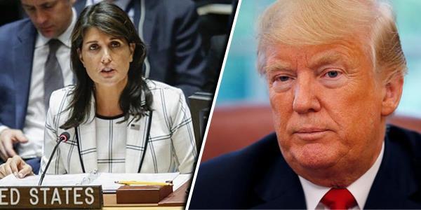 ترامب «مغردا»: إعلان مهم مع السفيرة نيكي هيلي في المكتب البيضاوي