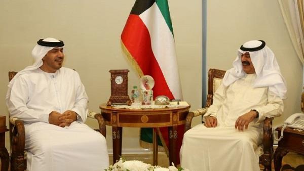 نائب وزير الخارجية يبحث مع سفير الإمارات التطورات إقليميا ودوليا