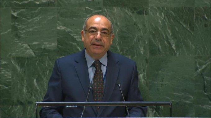 """مصر تطالب بحصول أفريقيا على حق """"الفيتو"""" في مجلس الأمن"""