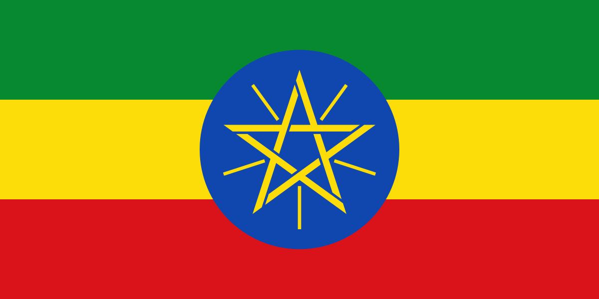 مقتل 8 أشخاص وإصابة 80 في احتجاجات بمدينة أداما الإثيوبية