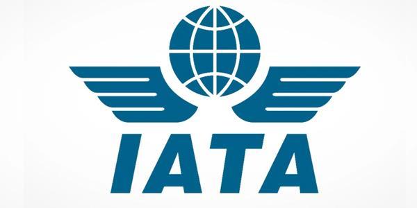 «إياتا»: الحجر الصحي يعرقل استئناف السفر ويؤدي لإفلاس شركات الطيران