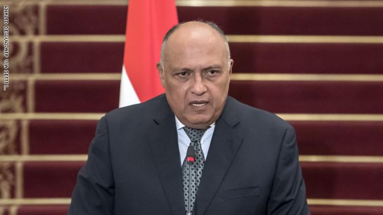 شكري يؤكد موقف مصر الثابت من القضية الفلسطينية